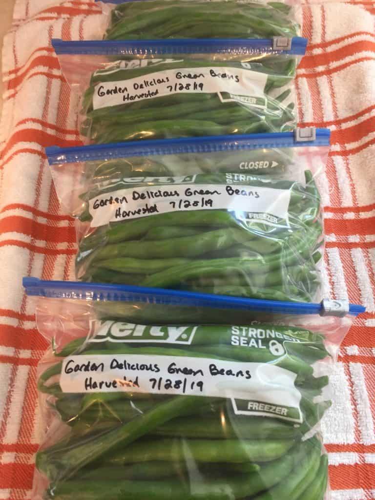 Freezing Green Beans The Garden Delicious